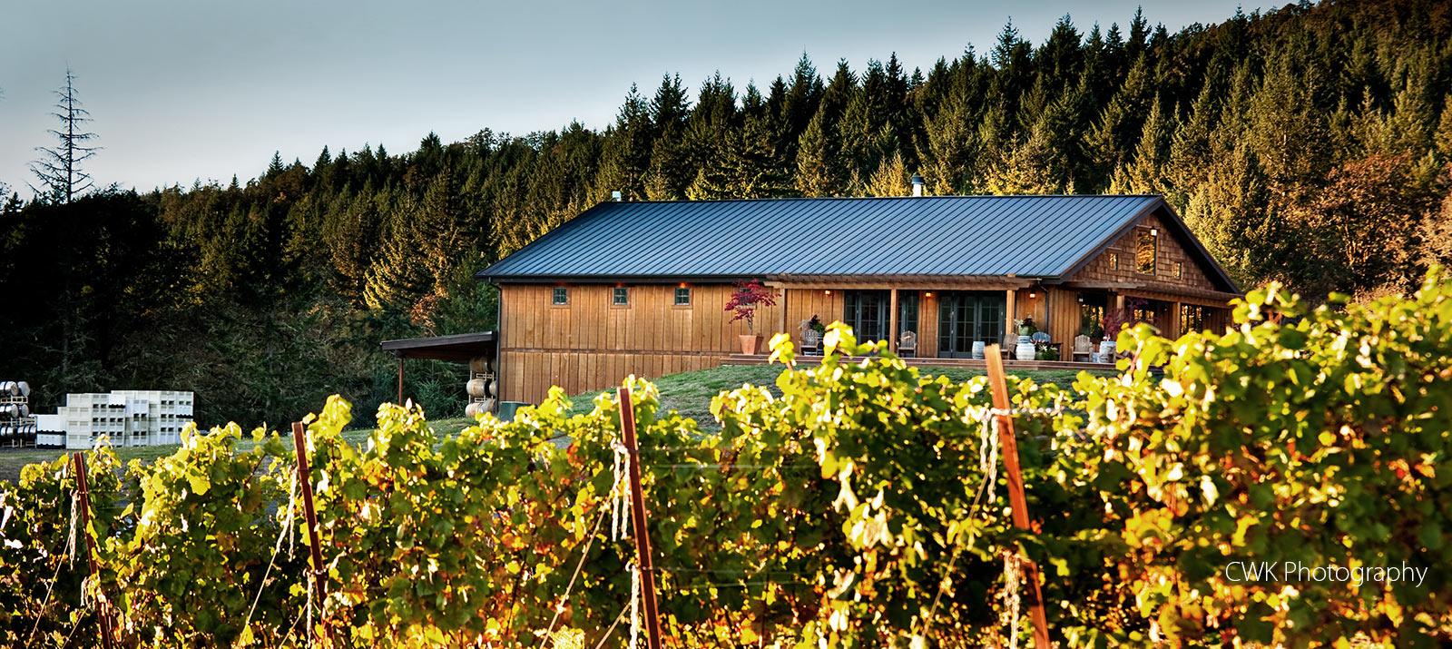 Coeur de Terre winery McMinnville Oregon wine tasting
