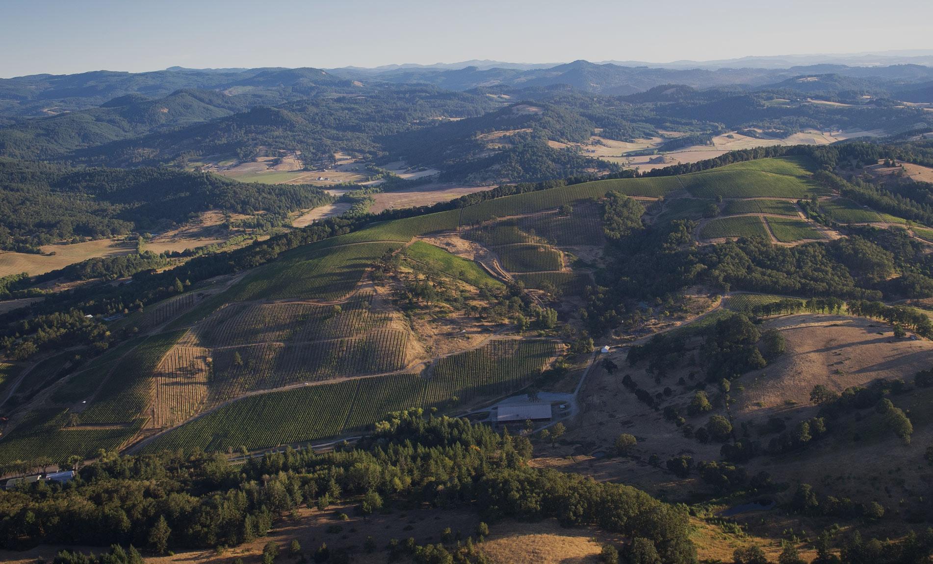 Maysara Winery McMinnville AVA Foothills