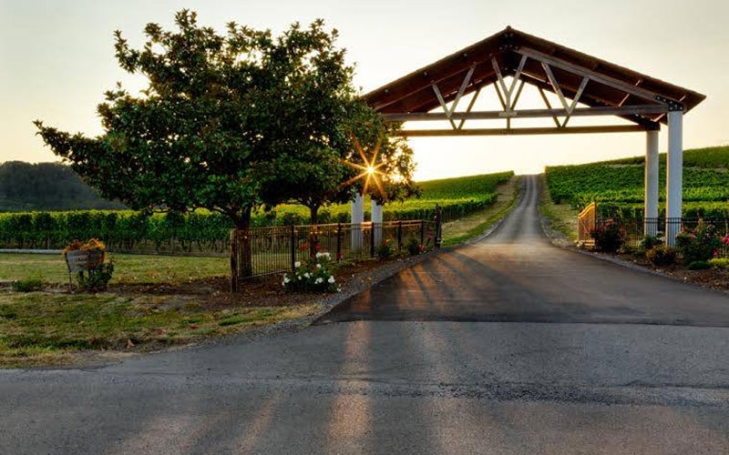 Yamhill Valley Vineyards entrance