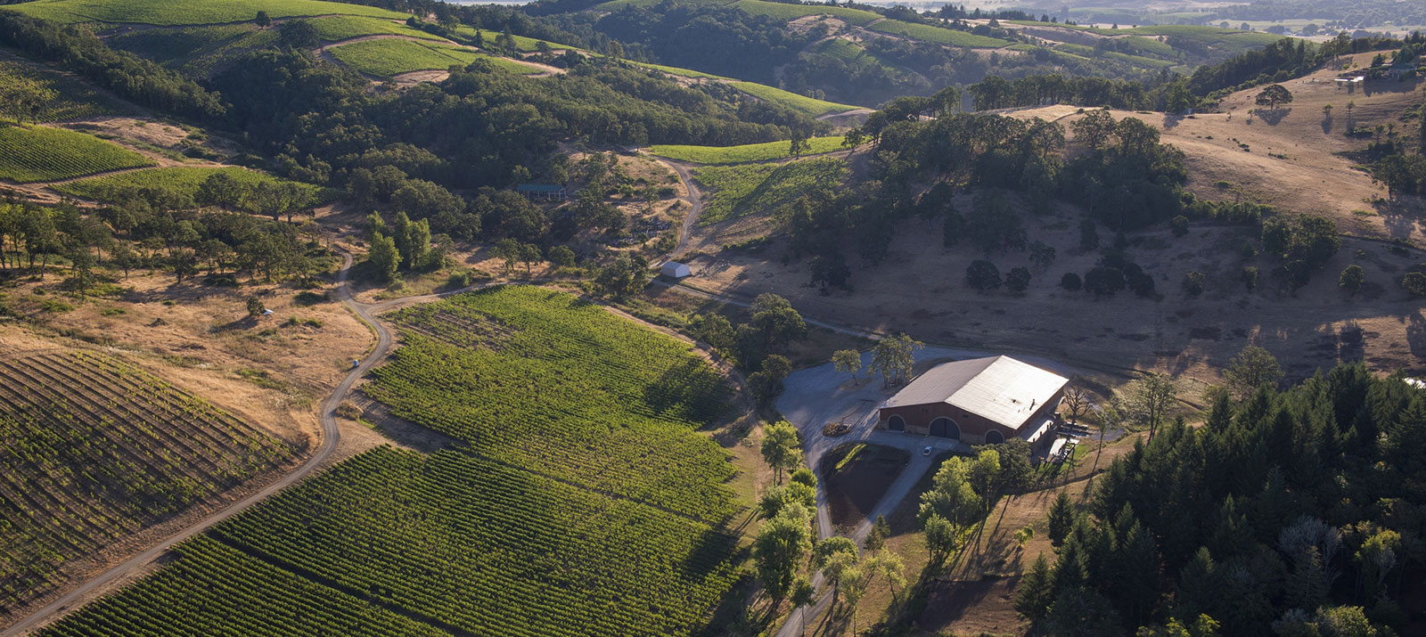 Maysara winery aerial view Momtazi Vineyard McMinnville