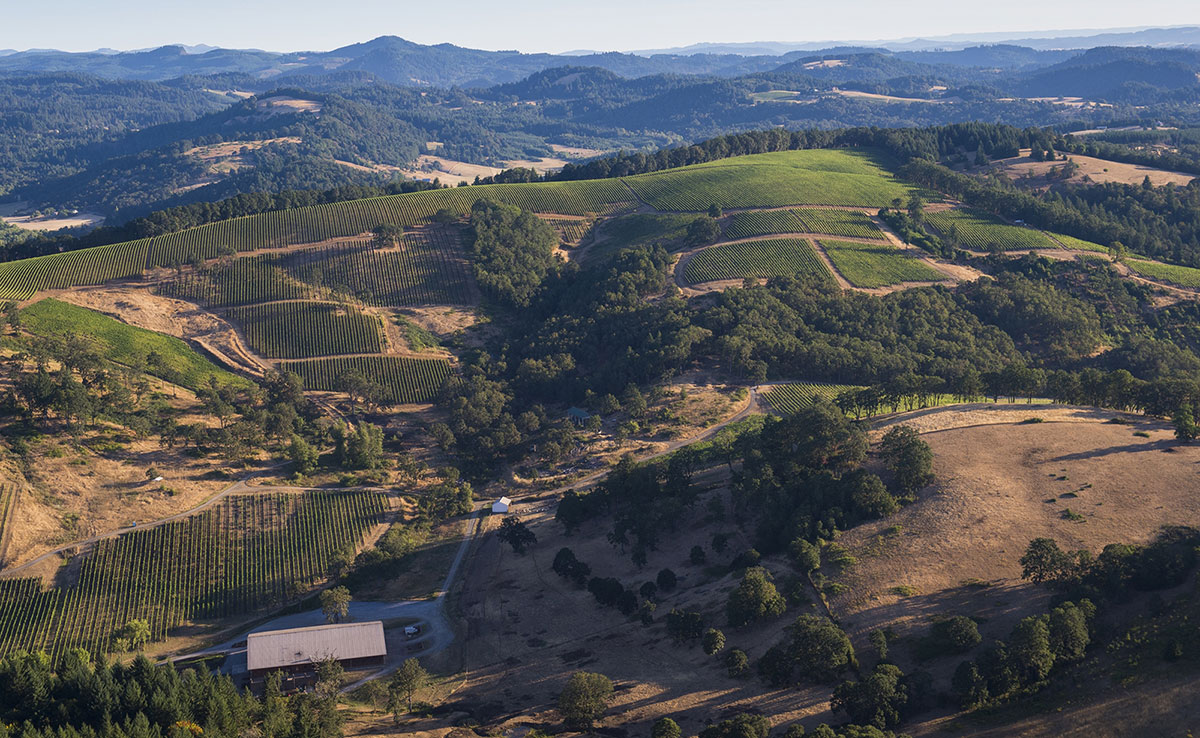Aerial view of Momtazi Vineyard, McMinnville Foothills